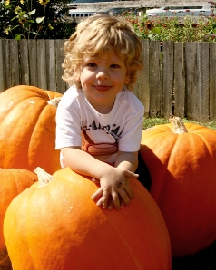 mt day pumpkins_*0262 jack